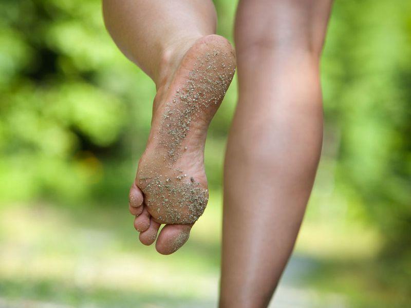 Le pied, un bijou de technologie
