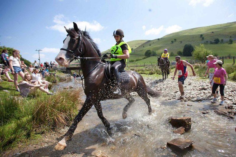 Course entre les hommes et les chevaux