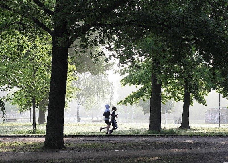 course à pied allergie pollens parc