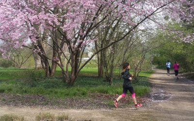 La RunMotion Race : une reprise en douceur pour Margot !
