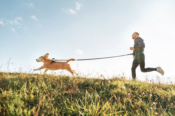 canicross-courir-avec-son-chien