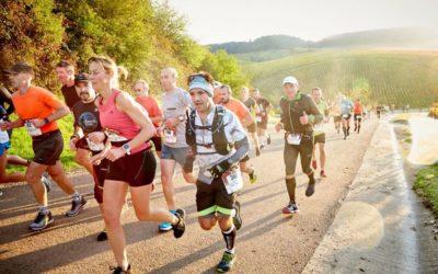 Le Marathon de Chablis : sport, fête et convivialité
